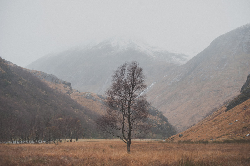 Preboda en Escocia53
