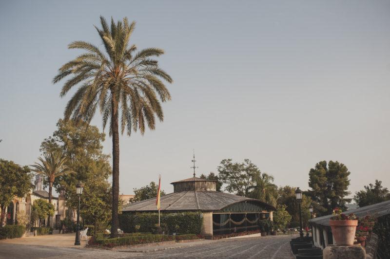 Preboda en Las Palmas y Boda en Jerez